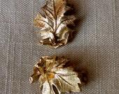 Lisner Oak Leaf Earrings in Florentined Goldtone