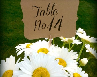 Shabby Chic Rustic Table Number Holders Wedding Clips Fall TABLE NUMBERS and HOLDERS set of 20