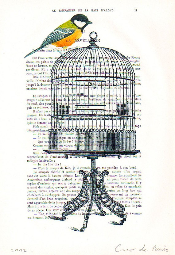Drawing Illustration Giclee Prints Posters Mixed Media Art Acrylic Painting Holiday Decor Gifts: Bird on birdcage