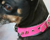 Pink Buckle and Spike - Collar Cover