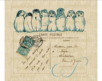 Birds in a row Paris Carte Postale Instant clip art Digital download image for iron on fabric transfer burlap decoupage pillow paper No.1715