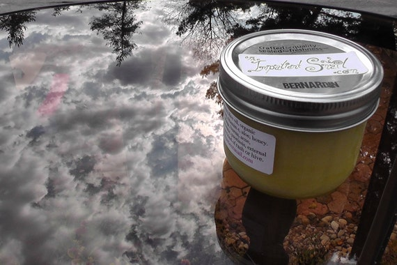 Miraculous Plantain Salve- 250mL wide mouth mason jar
