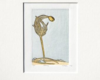 "LAST ONE! ""Seedling"" a sweet baby Ponderosa Pine - Original Linocut Fine Art Mini-Print 3"" x 4.5"" Relief Printmaking"