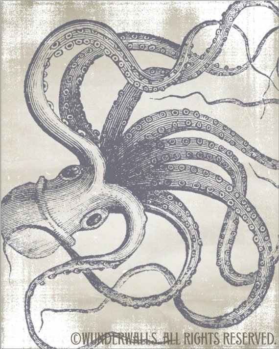 "Octopus Art Print of Cephalopod on Antique Paper 16"" x 20"" Canvas-Wrapped Frame"