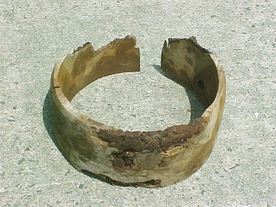"Burl wood collar ring - cut in big circle - 8"" diameter - basket making supply - natural wood ring"
