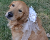 Flower Dogs: gorgeous tulle collar in custom colors - fuss-free wedding dog collar