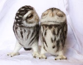 Needle felted owl couple, a forever love story