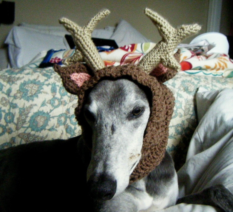 Antler Dog Snood by TheHoundAndHook on Etsy