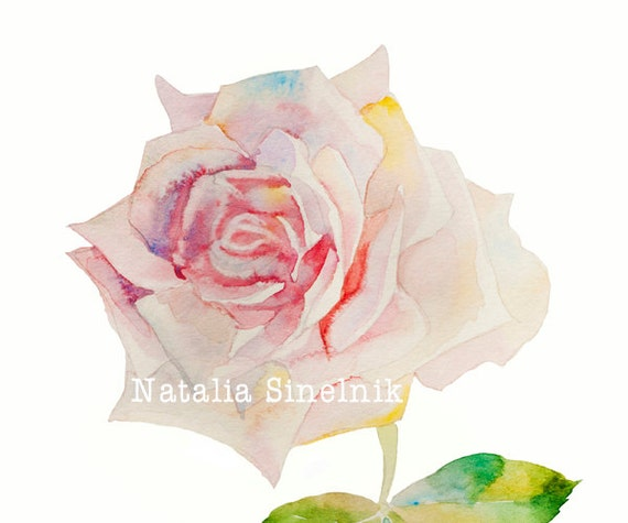 Pale pink rose digital download from original watercolor cottage chic clip art
