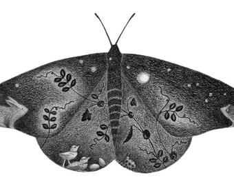 Monarch Butterfly - 5x7 print