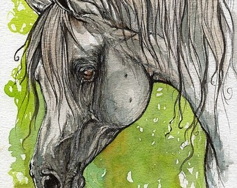 Emanda polish arabian horse watercolor painting