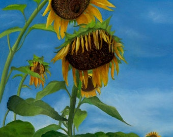 Sunflower Artwork, Sunflower Field, Sunflower art prints