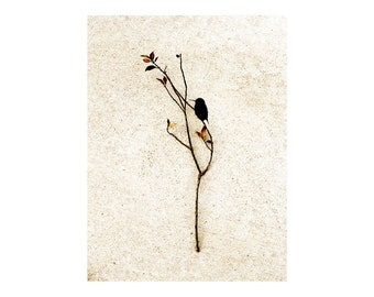 Autumn Wall Art Hummingbird Print Hello Bird Silhouette Branch Neutral Decor Minimalist