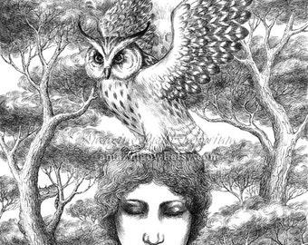 "Wisdom Seeks You - 8x10"" Giclee Art Print"
