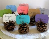 WEDDING PINECONE PLACE Cards Rustic : Set Woodland Wedding Escort Cards, Table Numbers, Rustic, Country, Fall Winter U Pick Color