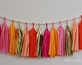 Juicy Orange/Pink Tissue Tassel Garland -  Includes 16 Tassels & Rope