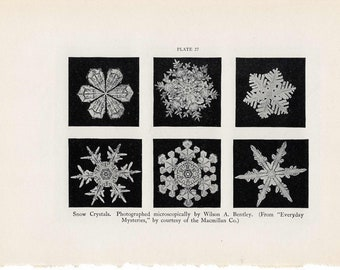 1934 SNOW CRYSTALS PRINT original vintage weather lithograph - winter snow flakes