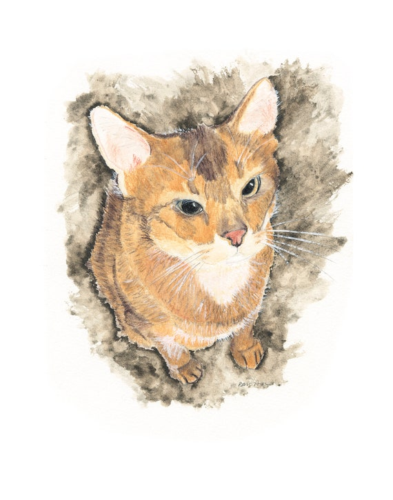 abyssinian cat watercolor painting giclee print on cold pressed watercolor paper
