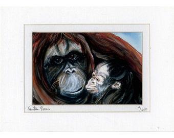 Orangutan Mother and Baby print 2 of 250