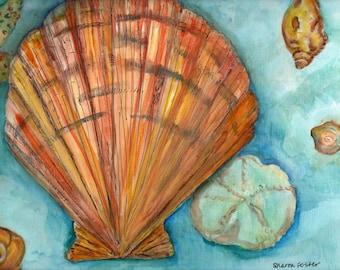 Seashells Watercolors Paintings Original, Sea shell, sand dollar, starfish underwater watercolor, Original watercolor painting of sea shells
