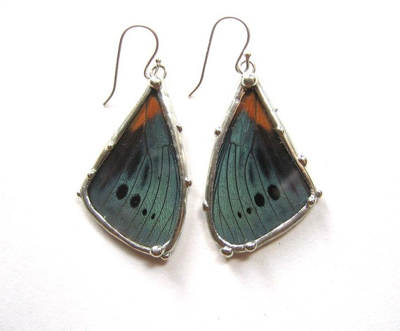 RESERVED FOR MONICA - Little Wing Earrings - Real Blue Butterfly Wings