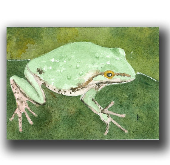 watercolor ACEO original TREE FROG 7 card draw