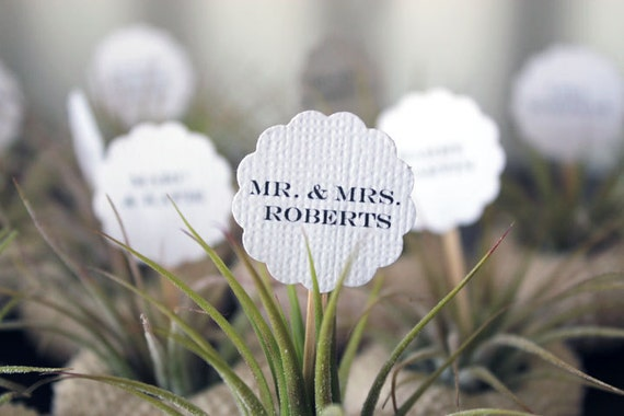 escort place cards // qty. 50 // air plant party favors // by robincharlotte