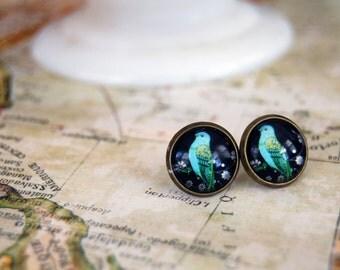Vintage blue bird post earrings- vintage style-antique brass frames