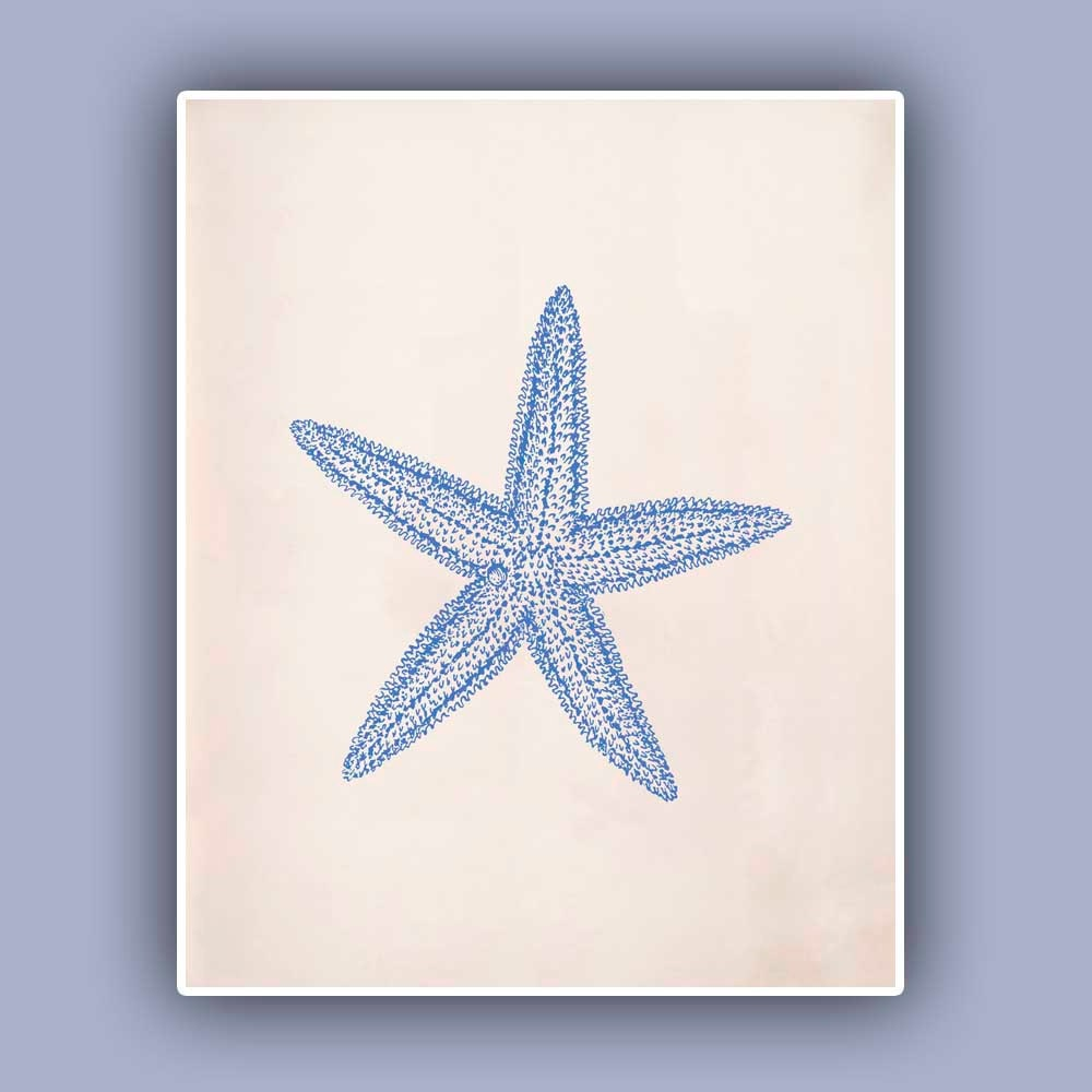 Blue Star Wall Decor : Blue starfish print sea star marine wall decor