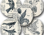 Dictionary Prints Digital collage sheet Birds Tulips Horses Flowers Book Text in 2.5-inch circles -- piddix 861