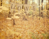 Autumn Photography, Valentine Day, Golden Yellow Leaves, Rustic Woodland, Romantic, Forest, Wedding, Yellow, Honey Gold - All is love - EyePoetryPhotography