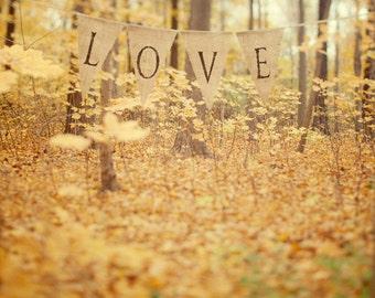 Autumn Forest, Fall Decor, Autumn Art, Wedding Gift, Fall Photography, Bedroom Decor, Romantic Art, Nature, Yellow Gold Wall Art 8x8