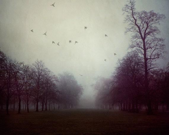"Moody Landscape Photography, Tree Print, Fog, Dark Atmosphere, Large Wall Art Print, Fine Art Photography, Purple,  ""Shadows and Fog"""