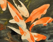 Koi Fish 6x6 Original Watercolor Painting on Canvas