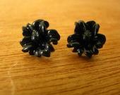 60% OFF SALE black hibiscus post earrings