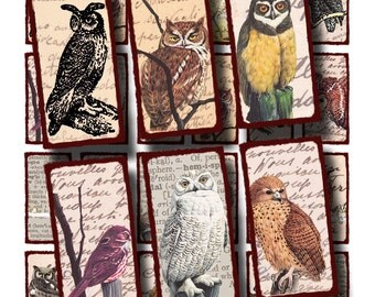 wise old owls, 1 x 2 inch domino tile sized collage sheet no. 338