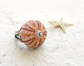 Sea Urchin Collection - Sterling Silver Pink Sultan Ring