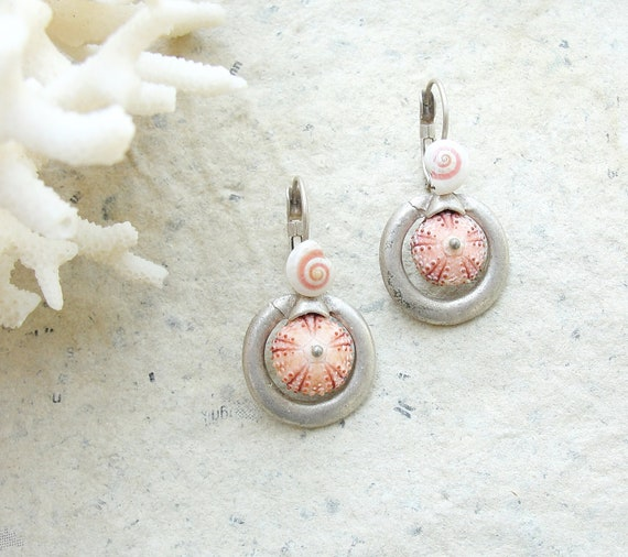 Sea Urchin Earrings - Special Urchin and Shell - One of a kind
