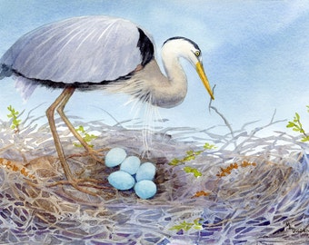 Bird print Mother's Love Great Blue Heron and 5 eggs