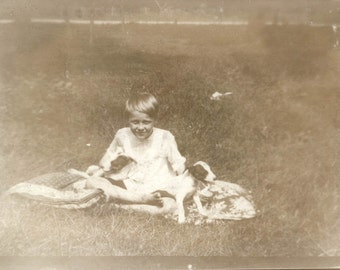 vintage photo Child with two Terrier Puppies