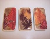 Fall Autumn Leaf Leaves Orange Brown Red Yellow Seasonal Domino Magnet Set of 3