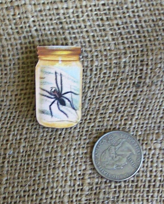 50% Off Science Class Spider In A Jar Spooky Halloween Unisex Pin Brooch For Lapel Hat Or Top