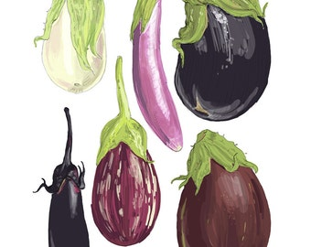 "ART508: Eggplants Illustration 8"" x 10"" Art Reproduction"