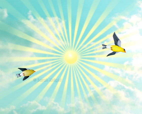 sunshine skies - signed digital illustration art print 8X10 inch, goldfinches birds flight aqua blue yellow sun rays clouds summer art