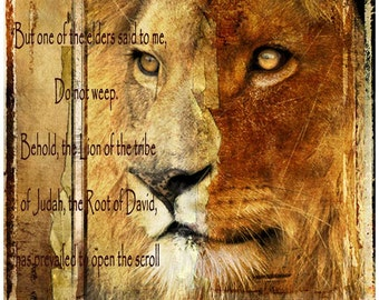 Lion of the Tribe ofJudah - Inspirational Art - Mirror My Word Art - Digital art Print - 8 x 8 inch