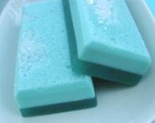 Soap. Mom Sister Aunt gift. REFRESH Eucalyptus & Mint Salt Bar Soap, Unisex, Summer, Bath and Beauty Gift, Shower. Shaving. Gift for her