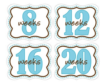 12 Weekly Pregnancy Mama-to-be Maternity Waterproof Glossy Die-cut Stickers  - Monthly stickers available - Design W008-01