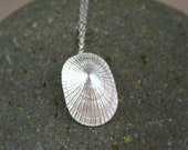 Opihi Shell Necklace, Fine Silver