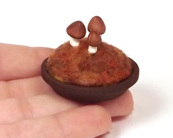 Miniature Mushrooms Microcosm Tiny Mushroom Toadstools Scene Mushroom Lovers Gift Mycology Nature Decor Collectible Made To Order