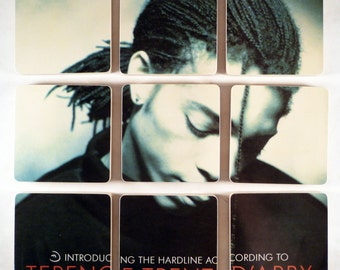 Terence Trent Darby recycled album cover wood coasters and warped vinyl record bowl
